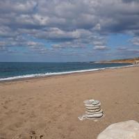 Пляж Лара - место рождения черепашек