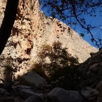 Ущелье Авакас