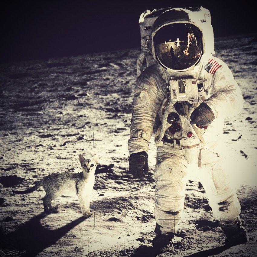 Снимок с Луны без фотошопа