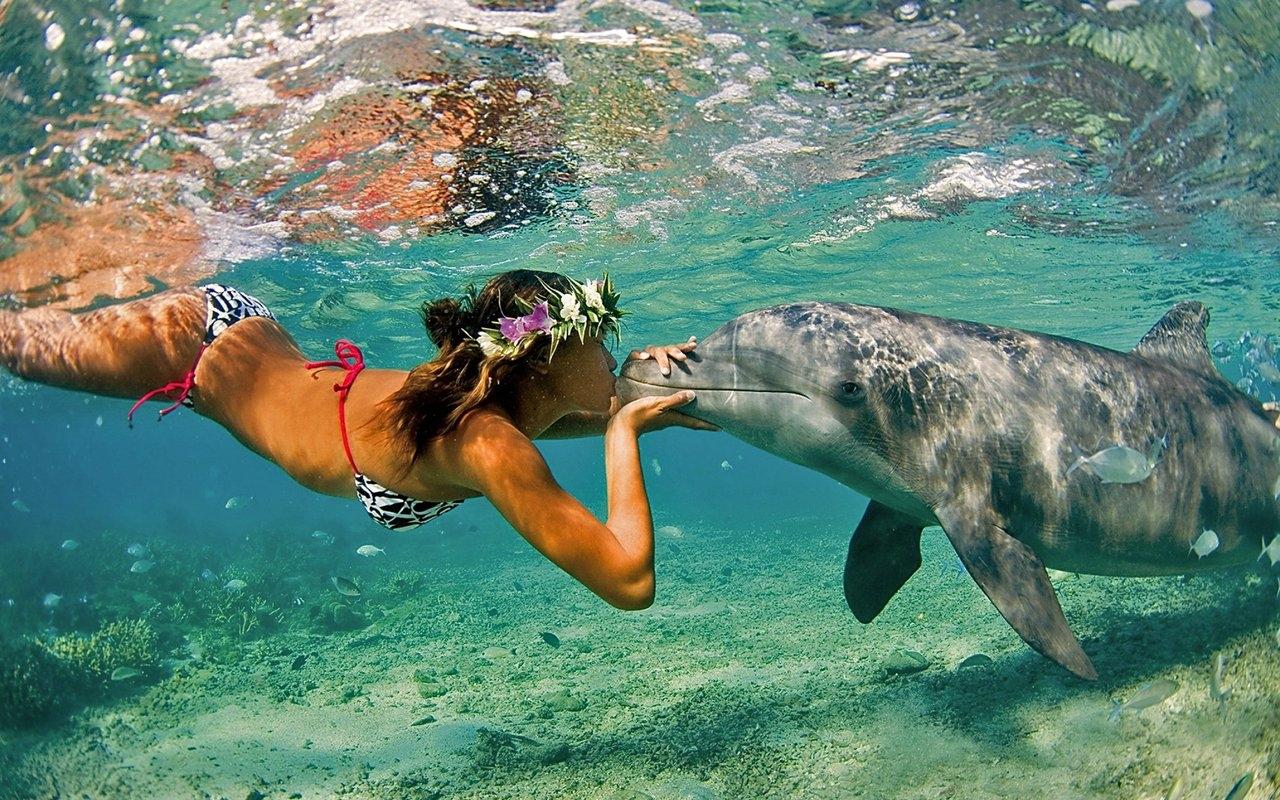 Девушка и дельфин