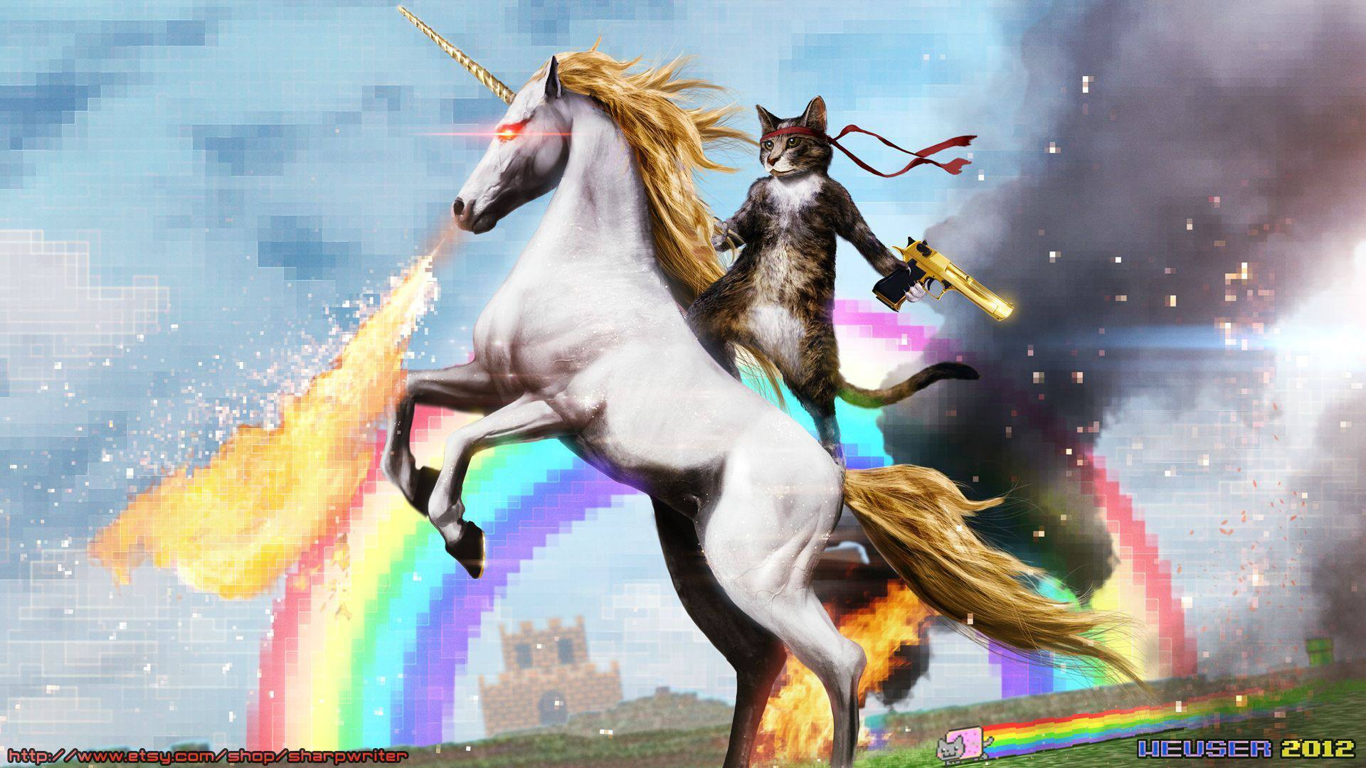 cat on unicorn