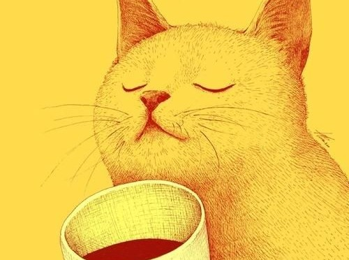 Cat-and-Coffee