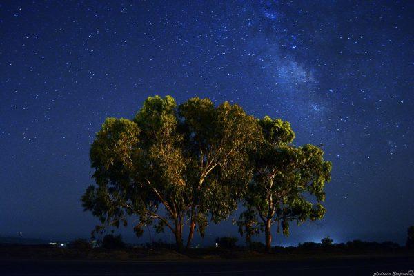Ночной Кипр