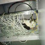 Специалист по сетям
